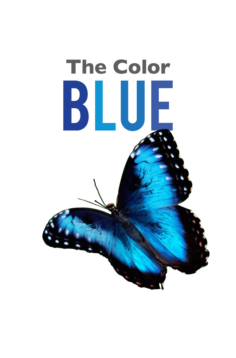 A World of Unlimited Stories at Your Fingertips! — The Color Blue
